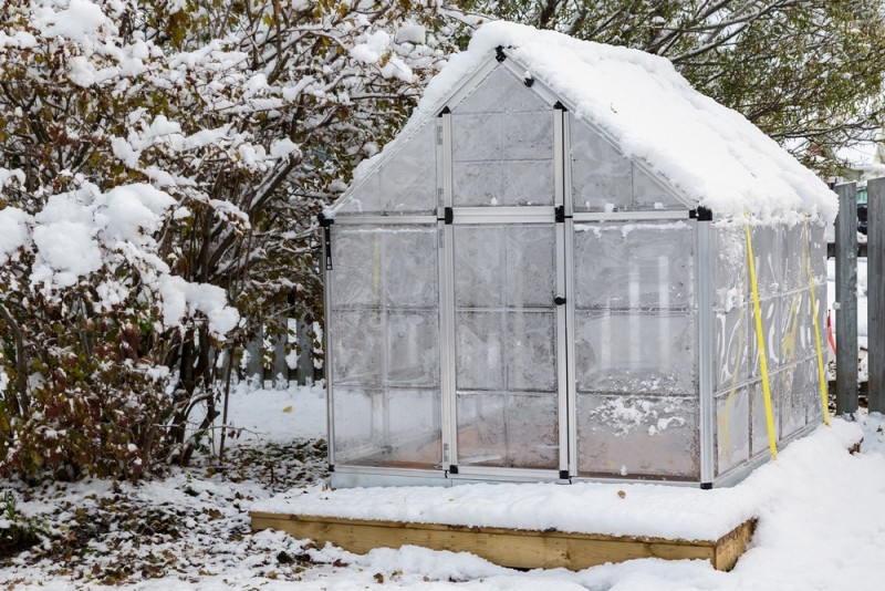 Sådan isolerer du dit drivhus til vinter